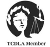 Texas-Criminal-Defense-Lawyers-Association1[1]